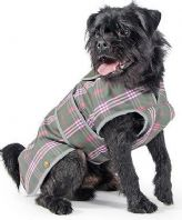 Dog Coats & Clothing